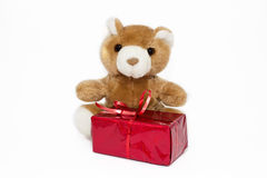 Teddy bear with gift box. Isolated Stock Photo