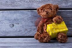 Teddy bear with gift box Stock Photos
