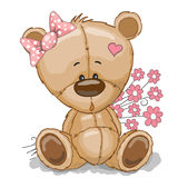 Teddy Bear. Girl with pink flowers isolated on white