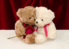 teddy bear gives a red rose to a special one Stock Images