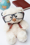 Teddy Bear with Glasses. A Globe and a Book on a White Background Stock Photo
