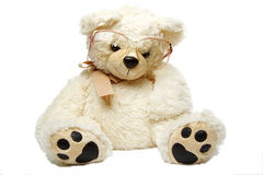 Teddy bear in glasses isolated Royalty Free Stock Images