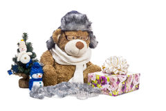 Teddy bear in glasses scarf hat near Christmas tree Royalty Free Stock Image