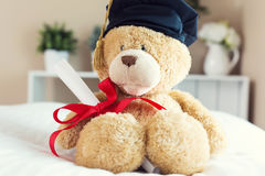 Teddy bear in graduation cap holding his diploma Royalty Free Stock Photography