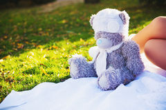 Teddy bear on the grass. Gray toy bear in a white hat on the grass Royalty Free Stock Photography