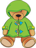 Teddy Bear in green coat Stock Images