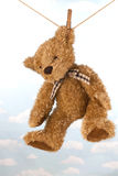 Teddy bear hanging on clothes line drying Royalty Free Stock Photography