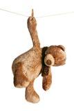 Teddy bear hanging on clothesline. The teddy bear hanging on clothesline Royalty Free Stock Photo