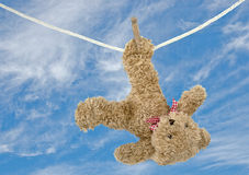 Teddy bear hanging to dry on clothesline Royalty Free Stock Photo