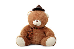 Teddy bear in hat Royalty Free Stock Photo