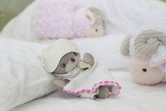 Teddy bear have sweet dream with counting sheep Stock Photos