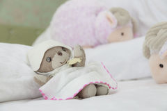 Teddy bear have sweet dream with counting sheep Stock Images