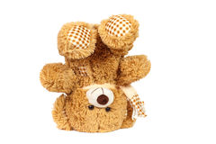Teddy bear head over Stock Images