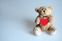Teddy bear with a heart. Picture of a teddy bear keeping the red heart royalty free stock images