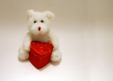 Teddy Bear With Heart Box. Little White Teddy Bear With Heart Covered Gift Box royalty free stock photo