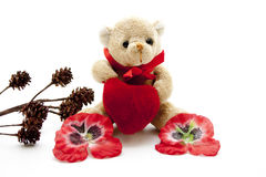 Teddy bear with heart Royalty Free Stock Photo