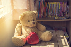Teddy Bear with a Heart on the sun light Royalty Free Stock Image