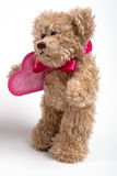 Teddy bear with heart. Valentine's day Stock Image