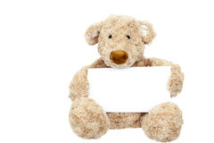 Teddy bear holding an add space. Teddy bear holding a message Stock Photography