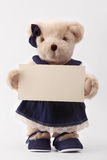 Teddy bear holding a blank card Stock Images