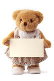 Teddy bear holding a blank card Royalty Free Stock Photography