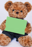 Teddy bear holding a blank green sign  on white backgrou Stock Photo