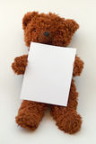 Teddy bear holding blank message paper or board Stock Images