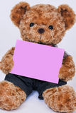 Teddy bear holding a blank pink sign isolated on white backgroun Stock Image
