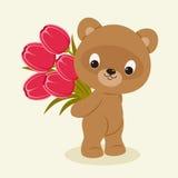 Teddy bear holding a bouquet of flowers. Teddy bear holding a bouquet of tulips. Festive vector cartoon illustration Royalty Free Stock Photos