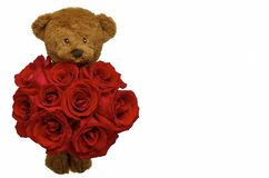 Teddy bear holding the bouquet of red roses for Valentine's Day. royalty free stock images