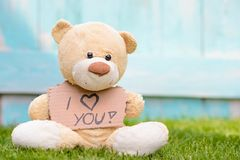 Teddy bear holding cardboard with information I love you. Little old teddy bear sitting on the grass in the garden and holding a piece of cardboard with the royalty free stock image
