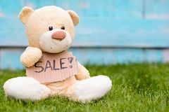 Teddy bear holding cardboard with information Sale Stock Photos