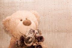 Teddy bear holding a flower. Behind the window glass is raining Stock Photo