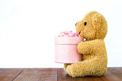 Teddy Bear holding gift box on wood Royalty Free Stock Images
