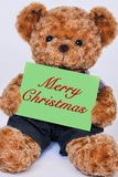 Teddy bear holding a green sign the reads Merry Christmas Stock Image
