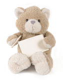 Teddy bear holding greeting card Royalty Free Stock Image