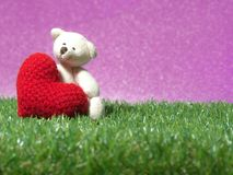 Teddy bear holding a handmade red heart on green grass background is royal pink.Copy space for text, Valentines day, love concept