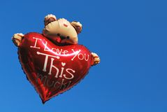 Teddy bear holding a heart Royalty Free Stock Photo