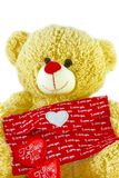 Teddy Bear Holding a Heart on white background royalty free stock image