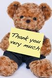 Teddy bear holding a sign that reads Thank you very much isolate. Cute teddy bear holding a yellow sign that says Thank you very much isolated on a white Stock Photography