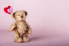 Teddy bear holding two hearts royalty free stock photography