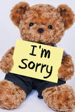 Teddy bear holding a  yellow sign that says I`m Sorry Royalty Free Stock Photography