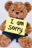 Teddy bear holding  yellow sign that says I am Sorry Royalty Free Stock Image