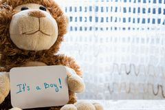 Teddy bear holds an announcement card for baby boy, space for text. New arrival in the family royalty free stock photography