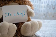 Teddy bear holds an announcement card for baby boy, space for text. New arrival in the family Stock Image
