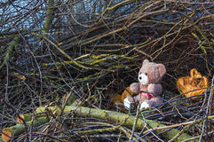 Teddy bear in a hole. Plush toy bear in a toy den as a plot for creation of stories to children Stock Photos