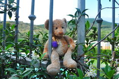Teddy bear on holidays. Stock Photography