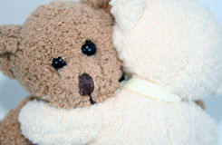 Teddy Bear Hug. White teddy bear hugging brown teddy bear Stock Photos