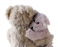 Teddy bear hug Royalty Free Stock Photo