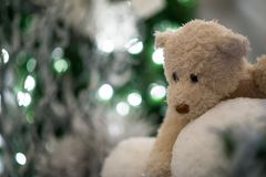 teddy bear hugs snowballs with blue christmas tree and lights blurred in the background. royalty free stock photography